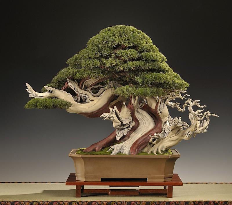 ein k nstlicher bonsai der unglaublich echt wirkt bonsai empire. Black Bedroom Furniture Sets. Home Design Ideas
