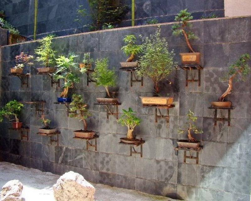 bonsai gartengestaltung bonsai empire. Black Bedroom Furniture Sets. Home Design Ideas