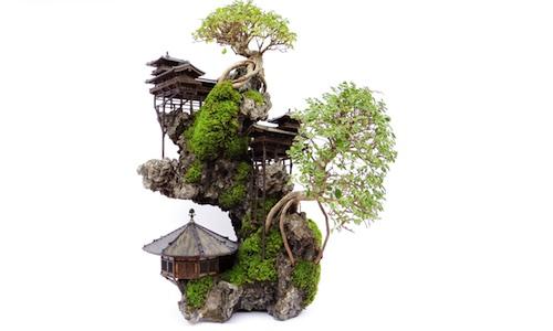 pflege und gestaltung von bonsai b umen bonsai empire. Black Bedroom Furniture Sets. Home Design Ideas