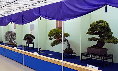 Die Taikan-ten Ausstellung 2018