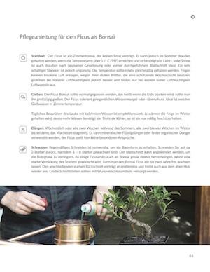 der bonsai leitfaden f r einsteiger ebook bonsai empire. Black Bedroom Furniture Sets. Home Design Ideas