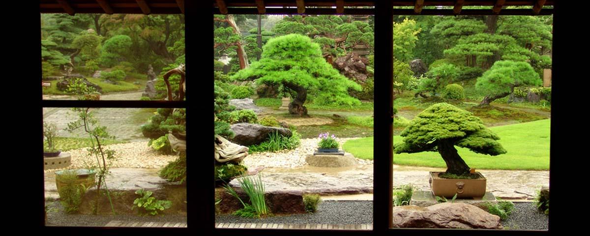 Japanischen Bonsai-Garten