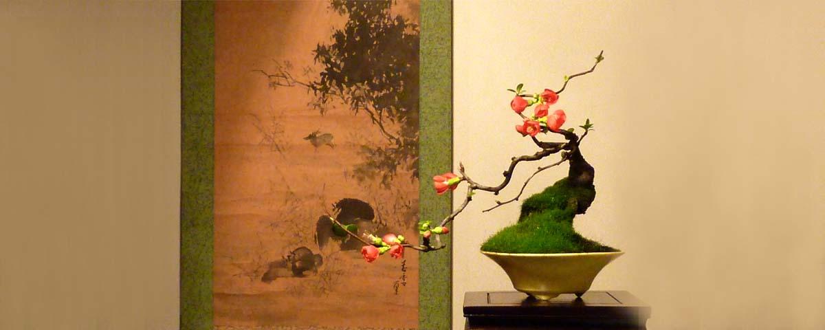 Blühende Bonsai